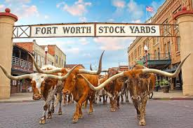 fire lane striping fort worth tx stockyards